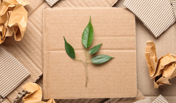 sustainable recyclable packaging