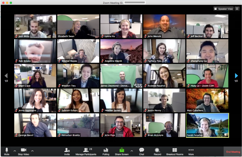 big team having a virtual meeting on Zoom